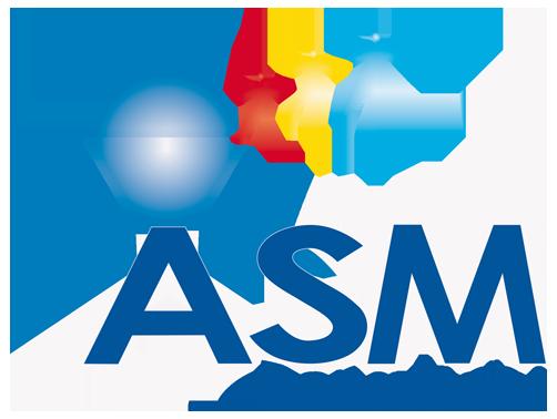 ASM Consultant - Logo